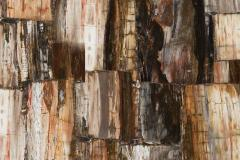 8331 Petrified Wood Retro