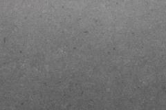 Vicostone Cendre BQ8805